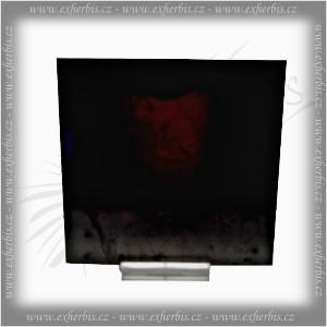 Salts Šungit dlaždička 10x10 x1 cm leštěná
